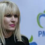 Udrea: PMP va contesta noul Guvern la Curtea Constituţională
