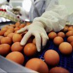 UE convoacă o întrunire de urgenă pe tema ouălor contaminate. Comisarul europen al Sănătății: Prioritatea noastră este să gestionăm situaţia