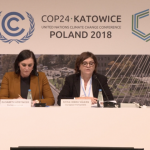 EP head of delegation of COP24, Adina Vălean, ahead of the Conference: This year is crucial because we have to deliver at global stage on the framework put in place by the Paris agreement